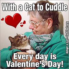With a cat to cuddle every day is Valentine's day