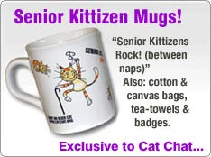 Buy Senior Kittizens Rock! (Between Naps) Coffee Mug