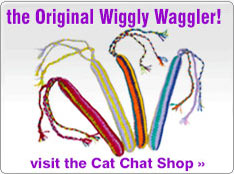 Waggler cat toys from Cat Chat