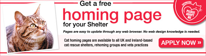 Free Cat Homing Page for Shelters