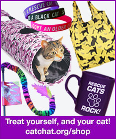 Shop at the Cat Chat webshop and raise funds