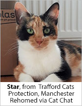 Star from CP - Trafford (Manchester) - Homed