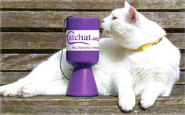 Beau Cat with Cat Chat donations tin